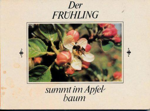 shop.ddrbuch.de DDR-Pappbilderbuch, für Kinder ab 3 Jahre, Farbfotografien mit Text zum Vorlesen