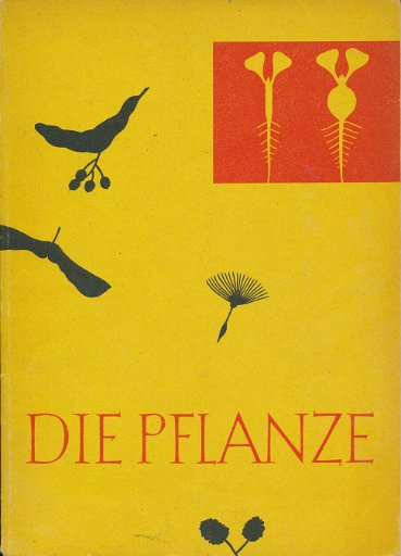 Die Pflanze  DDR-Lehrbuch