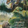 Unterwegs zu Jaguar und Kondor