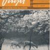 Unsere Jagd  Heft 6/1962 und Heft  3, 6 und 11/1963  DDR-Zeitschrift