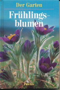 Der Garten – Frühlingsblumen