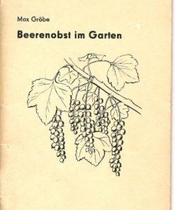 Beerenobst im Garten